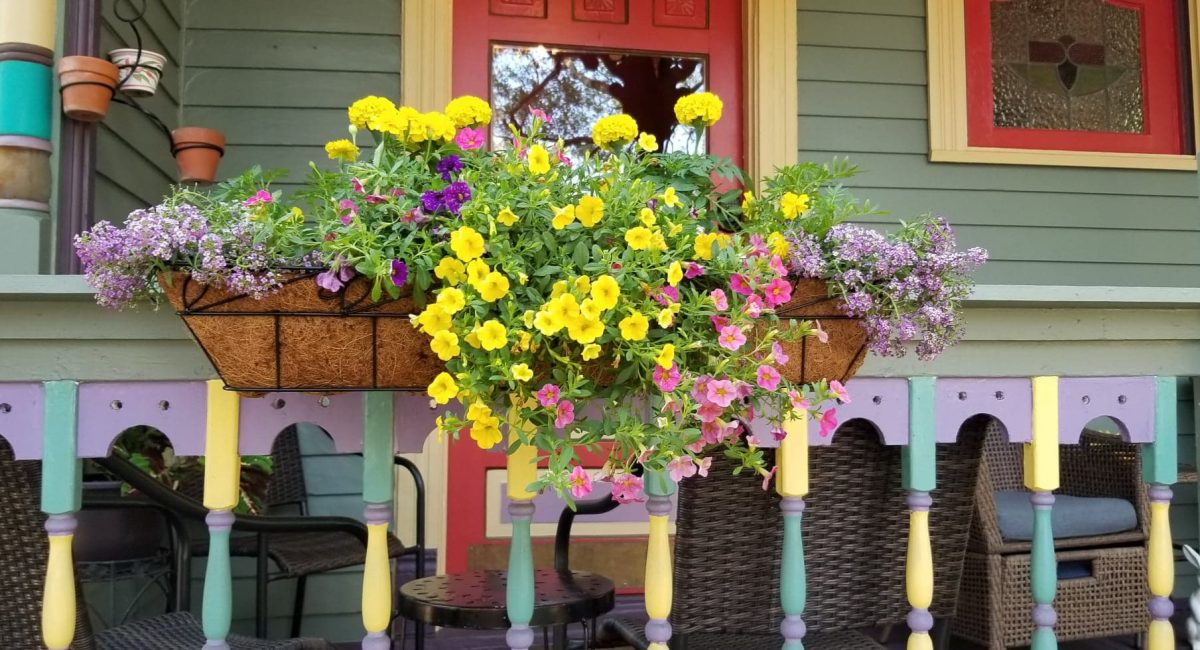 Flowers Blooming on the Front Porch